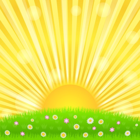Sunburst and green meadow with flowers Vector