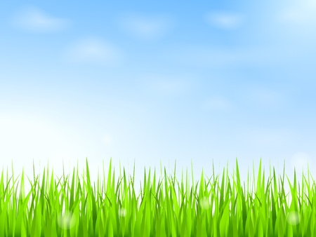 warm up: Green grass and blue sky with clouds