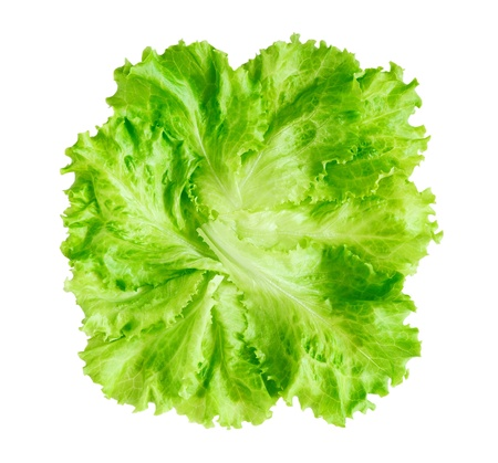 green leafy vegetables: Lettuce isolated on white background