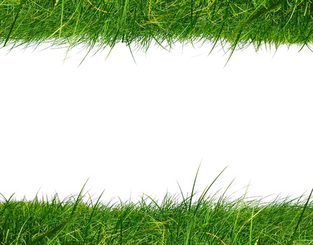 Grass frame isolated on white background photo