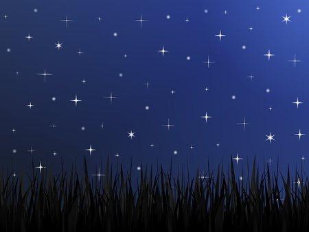 Silhouette of grass and night sky with stars Vector