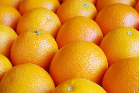 Rows of oranges, top view photo