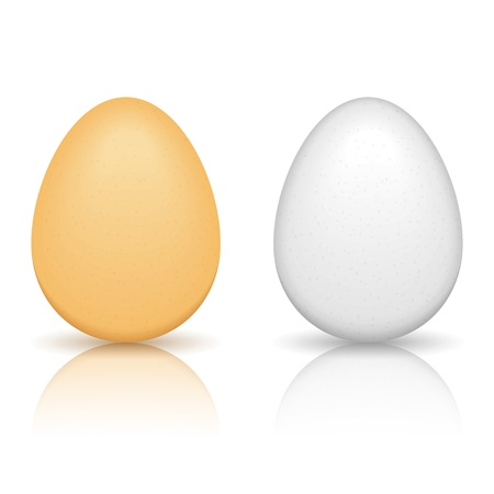 brown egg: Brown and white eggs