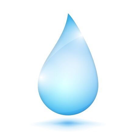 Water drop on white background Vector