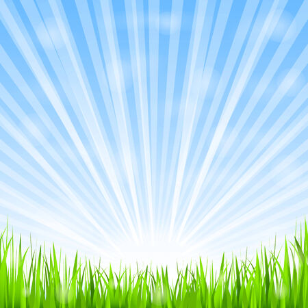 Green grass and shining sun