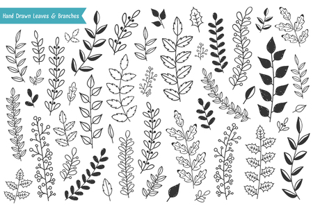 Collection of hand drawn leaves and branches on white background, vector eps10 illustration Illustration