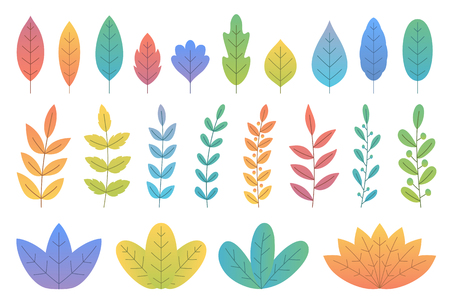 Colorful gradient leaves and trees, bushes and branches, white background