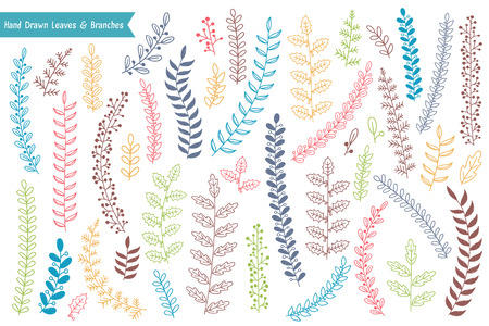 Colored hand drawn leaves and branches on white background, vector eps10 illustration Standard-Bild - 124506757