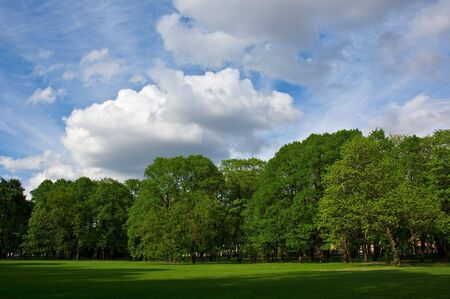 Summer park. White clouds over the trees. Stock Photo - 1261441