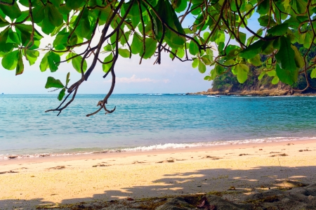 costa rica: Paradise beach Stock Photo