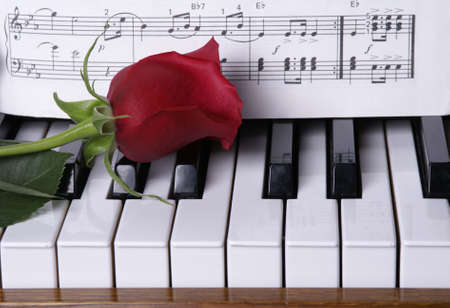 Red rose op piano toetsen met bladmuziek        Stockfoto