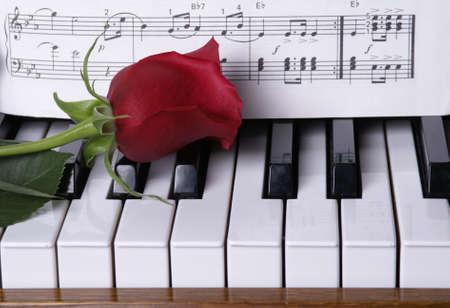 piano: Red rose op piano toetsen met bladmuziek        Stockfoto