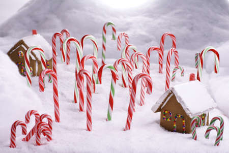 Ginger Bread huizen in Candy Cane woud       Stockfoto - 8306452