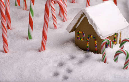 Footprints in the snow leading to Gingerbread cottage photo
