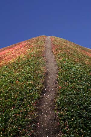 steep: A walking path going up a steep hill