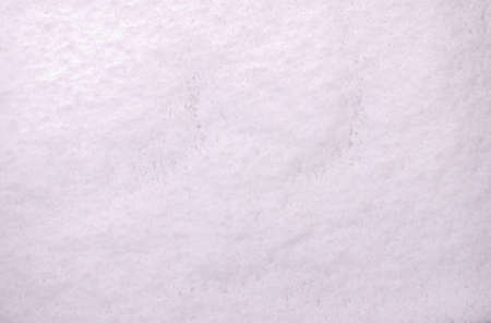 freshly fallen snow: Snow background appena caduta