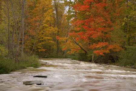 A rushing river in the fall in Cuyahoga National Park.