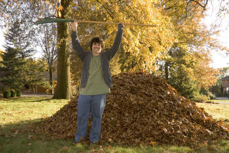 A teen boy raises his rake in triumph after raking a huge pile of leaves. Stock Photo