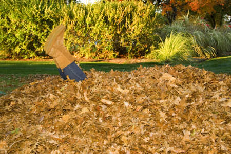 Feet sticking out of a large leaf pile.