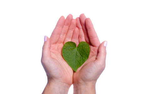 A heart shaped leaf resting in a girls hands