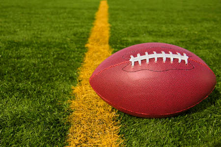 goal line: An American football resting just over the goal line for a touchdown.