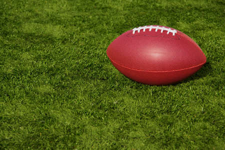 sport object: An American football resting on artificial turf field.