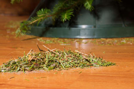A pile of needles from a Christmas tree on the floor.