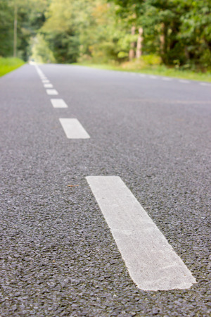 stone of destiny: White stripes on road in nature