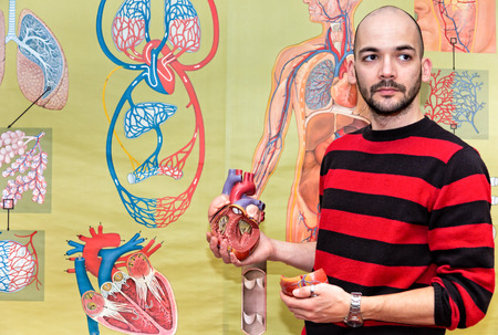 heart valves: Biology teacher holding human heart model in front of wall chart of blood circulation Stock Photo