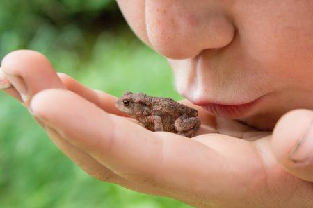 rana: Niño que besa a la rana en la mano. Boca cerca de animales