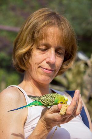 Kaukasischen Frau Fütterung Wellensittich Vogel auf der Hand Standard-Bild - 41412407