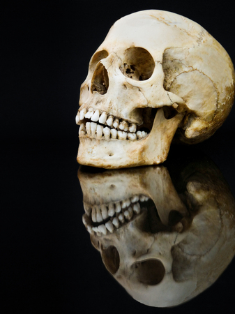 mirror image: Human skull with mirror image isolated on black