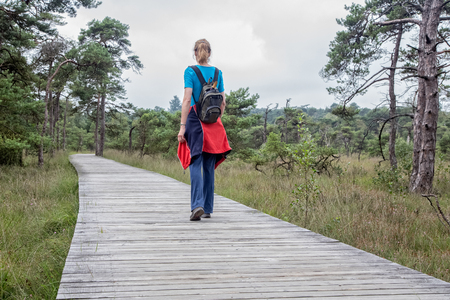 scots pine: Woman hiking on wooden footpath in nature with pine trees Stock Photo