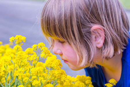 dutch girl: Young dutch girl smelling yellow flowers in summer