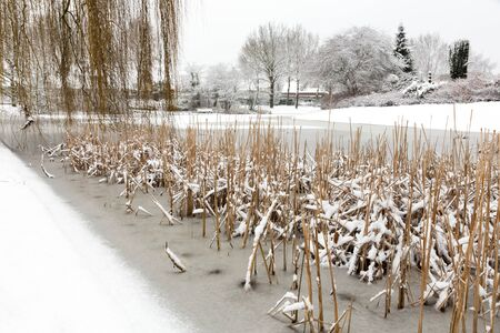 fallout: Snow and ice on water of pond in winter season