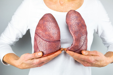 body human: Woman showing models of two lungs in front of chest to symbolize breathing for education