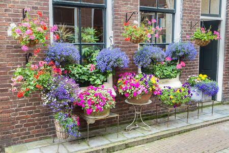 lobelia: Many pottery flowers hanging at brick wall in summer season Stock Photo