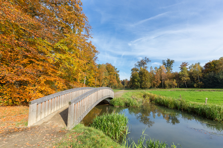 bridge over water: Fall forest landscape with wooden bridge over water near green meadow