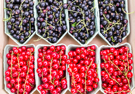 red berries: Fruit baskets with red berries and black currants on market