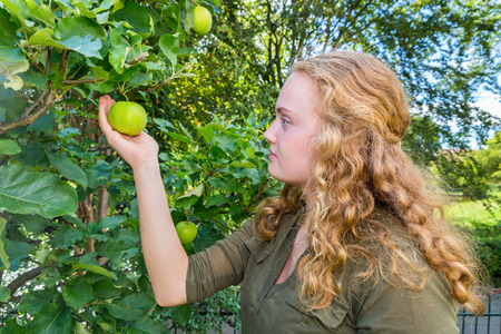 dutch girl: Young dutch woman holding apple in tree Stock Photo