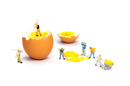 Team of miniature  construction workers figurines transporting chicken egg yolk