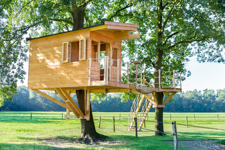 Newly built  wooden tree hut in oak trees with pasture Zdjęcie Seryjne - 66721398