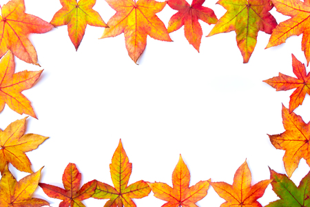 picture framing: Colorful autumn leaves frame on white background
