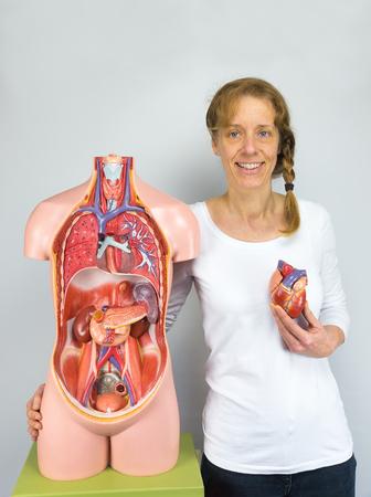 Caucasian woman showing heart model and human body