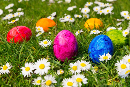 Painted easter eggs in green grass with  blooming white daisies