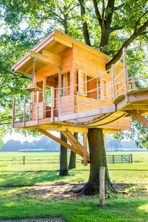 Newly built  wooden tree hut in oak trees with meadow