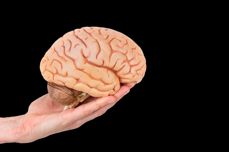 Hand holding human brains isolated on black background