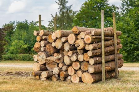 Piled pine tree trunks between poles in dutch park