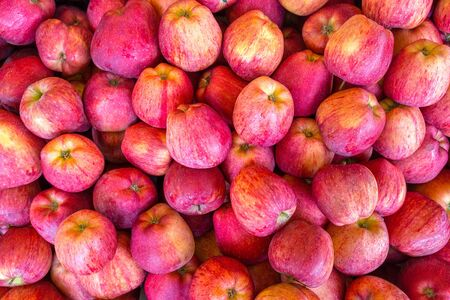 Cosecha de muchas manzanas amarillas rojas frescas en el mercado