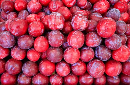 Multiple red fresh plums for sale at market Фото со стока - 131026934